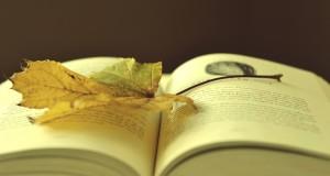 Najprodavanije knjige na Kupindu