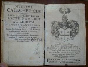 Knjiga stara 351. godinu