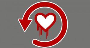 Naše srce ne krvari