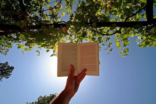 Čitanje u prirodi