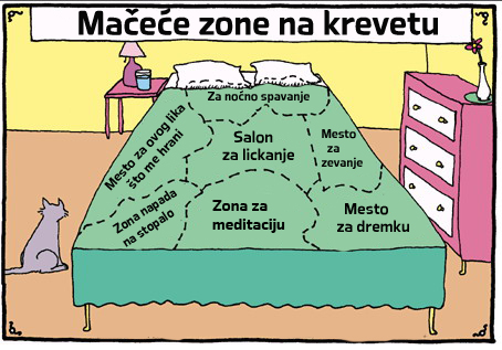 Zone_kreveta