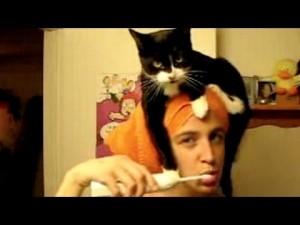 Maca_pranje_zuba