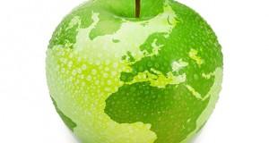 U zdravom telu zdrav duh – Svetski dan zdravlja