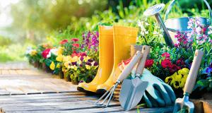 Kako da vaša bašta zablista tokom proleća? Iskustva i saveti članice MIMI63