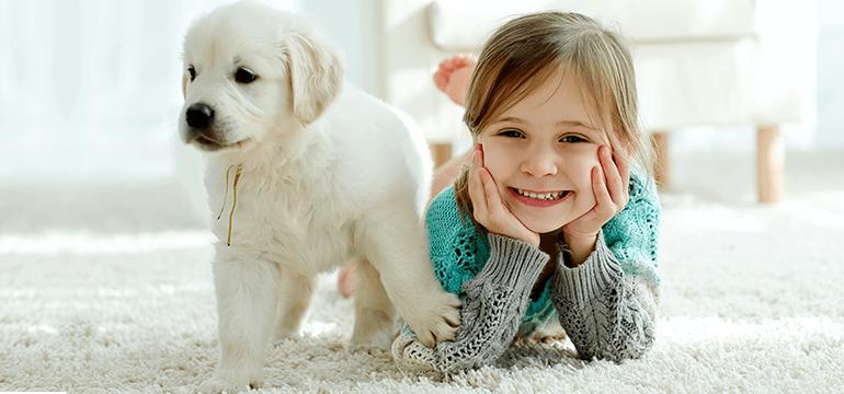 Prvi dani sa štenetom